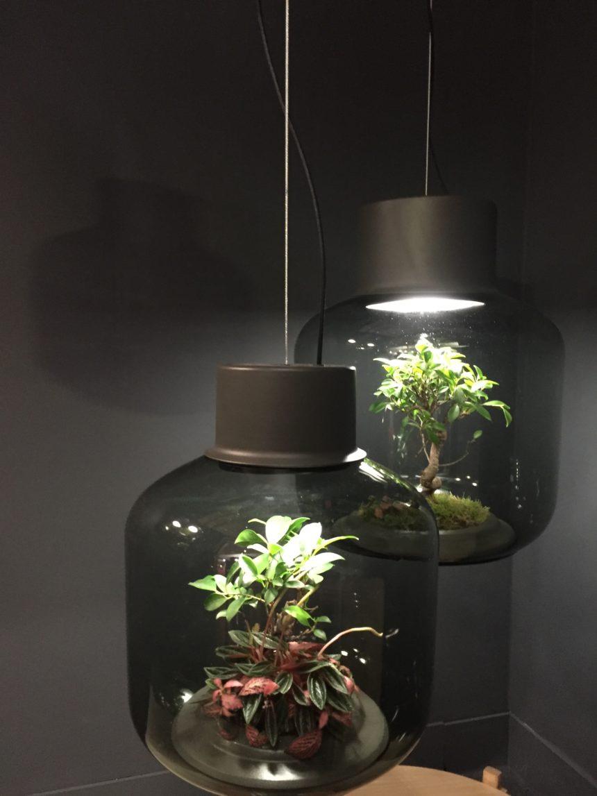 Mygdal_plantlight