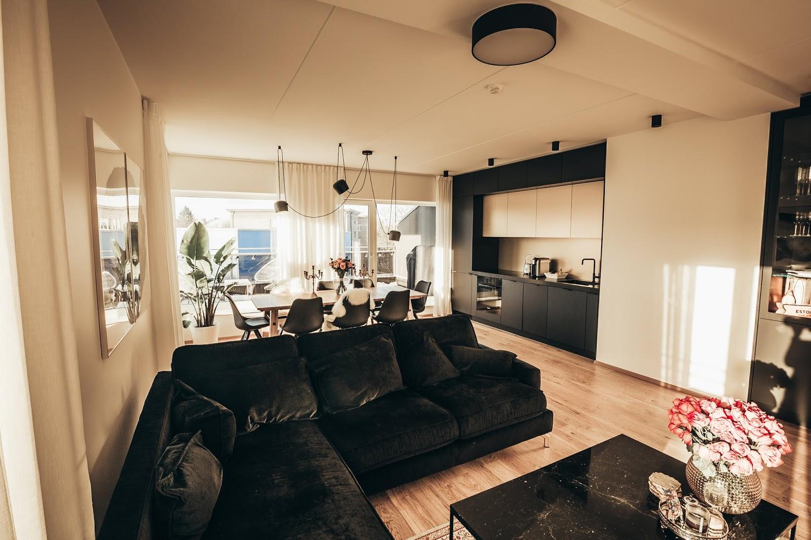 2 Kristjaana modern-living-room-3