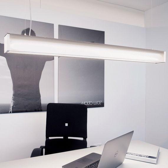 Moltoluce take office PD interior 2